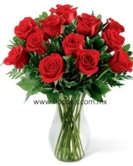 20-red-roses-with-base