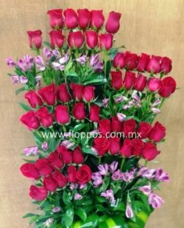 JARDINERA 50 ROSAS (2)